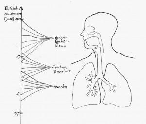Die Partikelgrösse ist wichtig für erfolgreiches Inhalieren